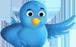 Suivez-nous sur Twitter!
